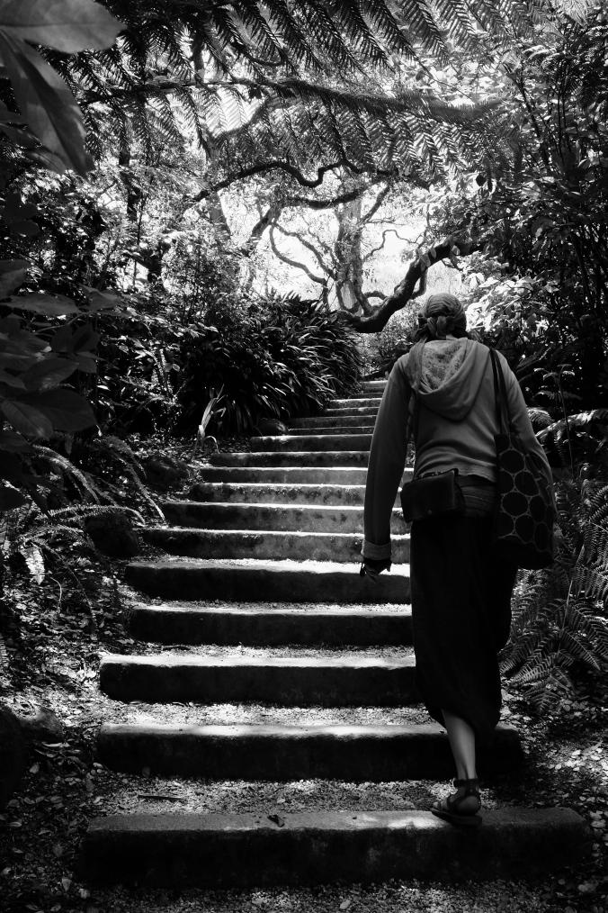 Dschungel-Treppe