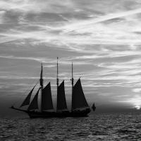 Hanse Sail 2015